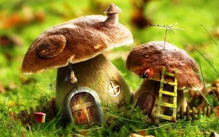 mushrooms-house-hd-wallpapers