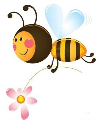 Funny-Bee-2042470